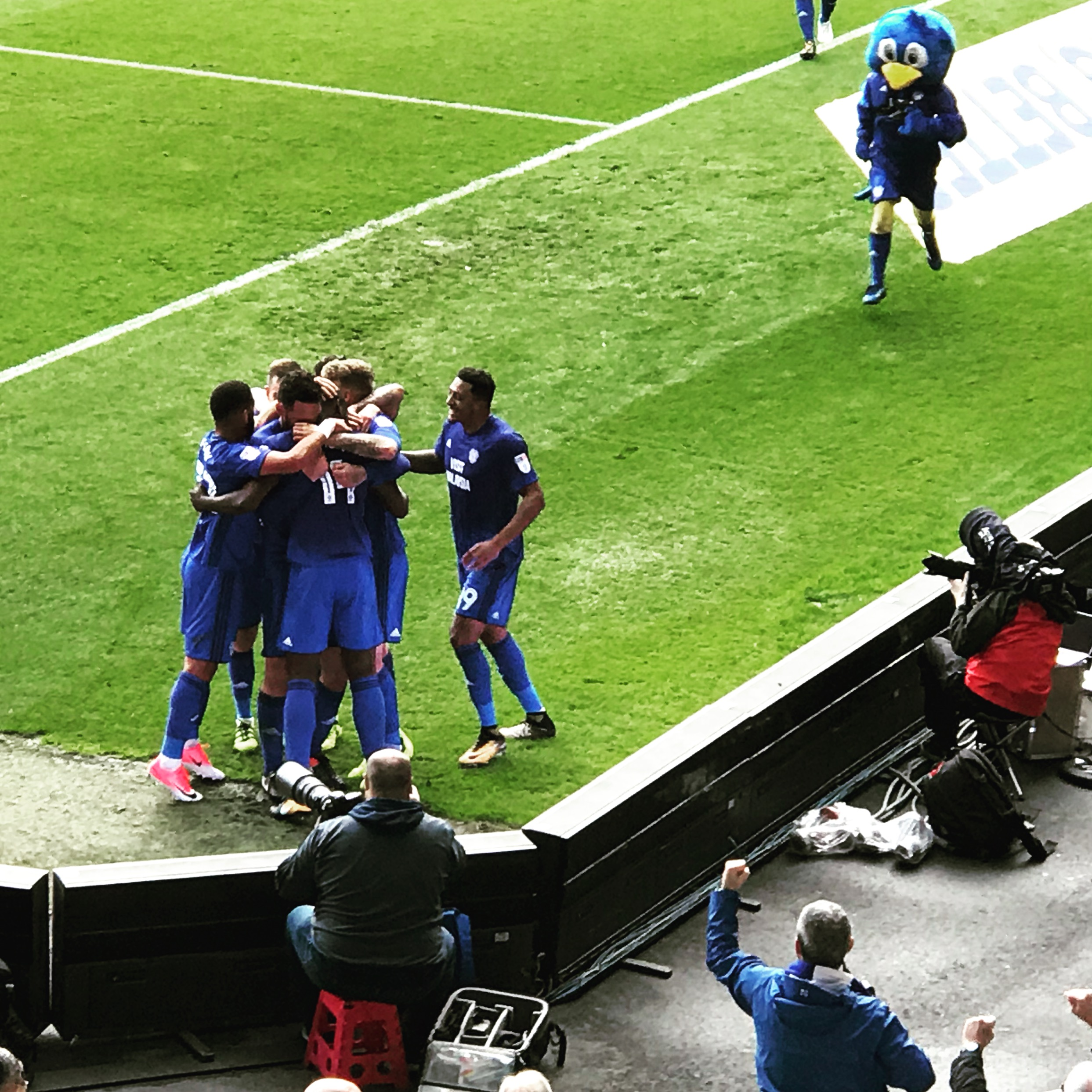 Cardiff City 1 - 1 Sheffield Wednesday. Match Report