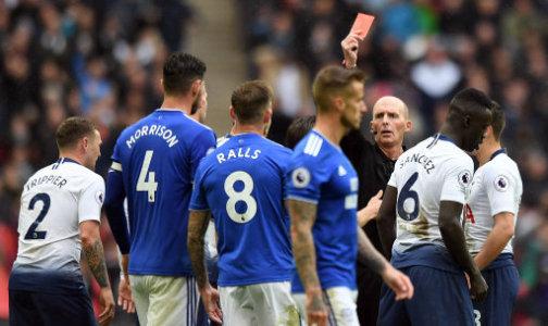 Tottenham 1 - 0 Cardiff City. Match Report